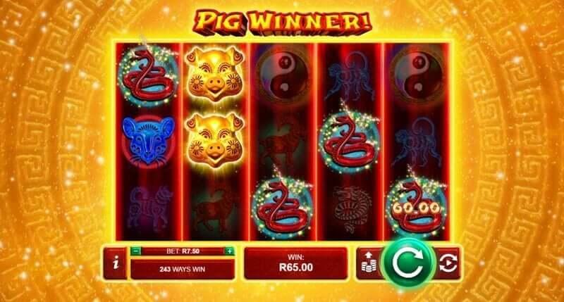 Pig Winner Video Slot Game