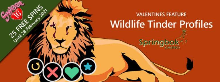 Springbok Casino's Valentines Feature Wildlife Tinder Profiles